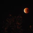 Red Blood Moon by Les Magee