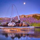 Fountain by Deon Van Den Berg