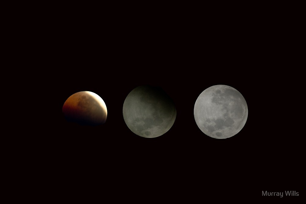 3.16.6.2011. Eclipse by Murray Wills