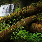 Middle Siouxon Falls I by Tula Top