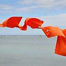 Orange Washing by Nick  Gill