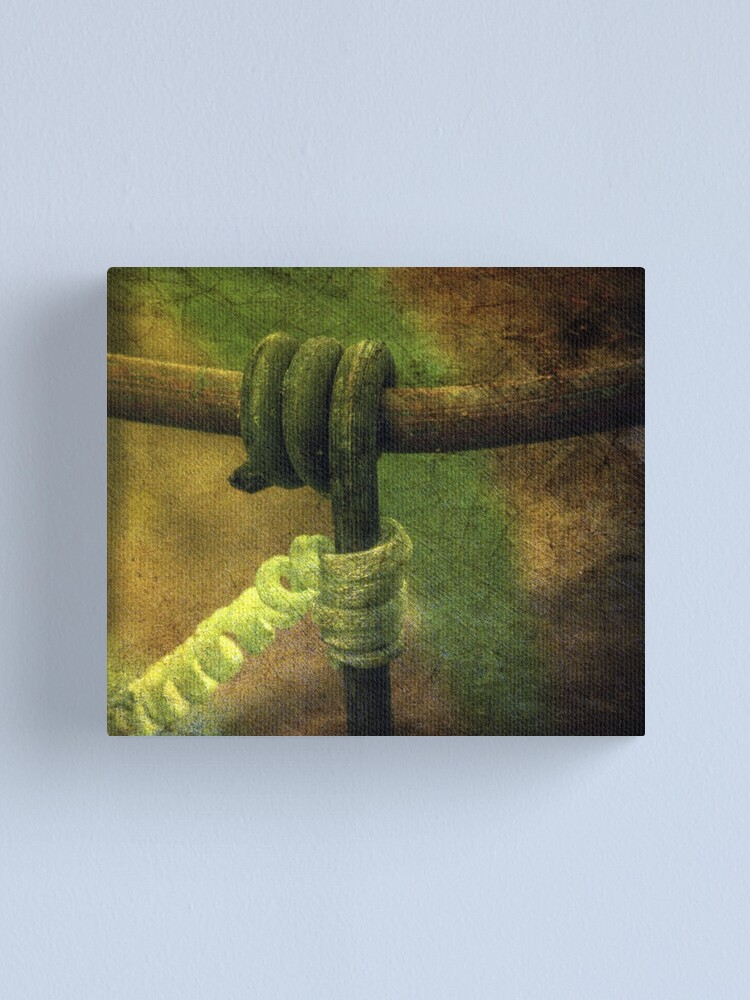 Alternate view of In Perfect Imitation Canvas Print