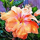 tropical hibiscus by jashumbert