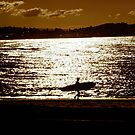 Silver Surfer by Jason Dymock Photography