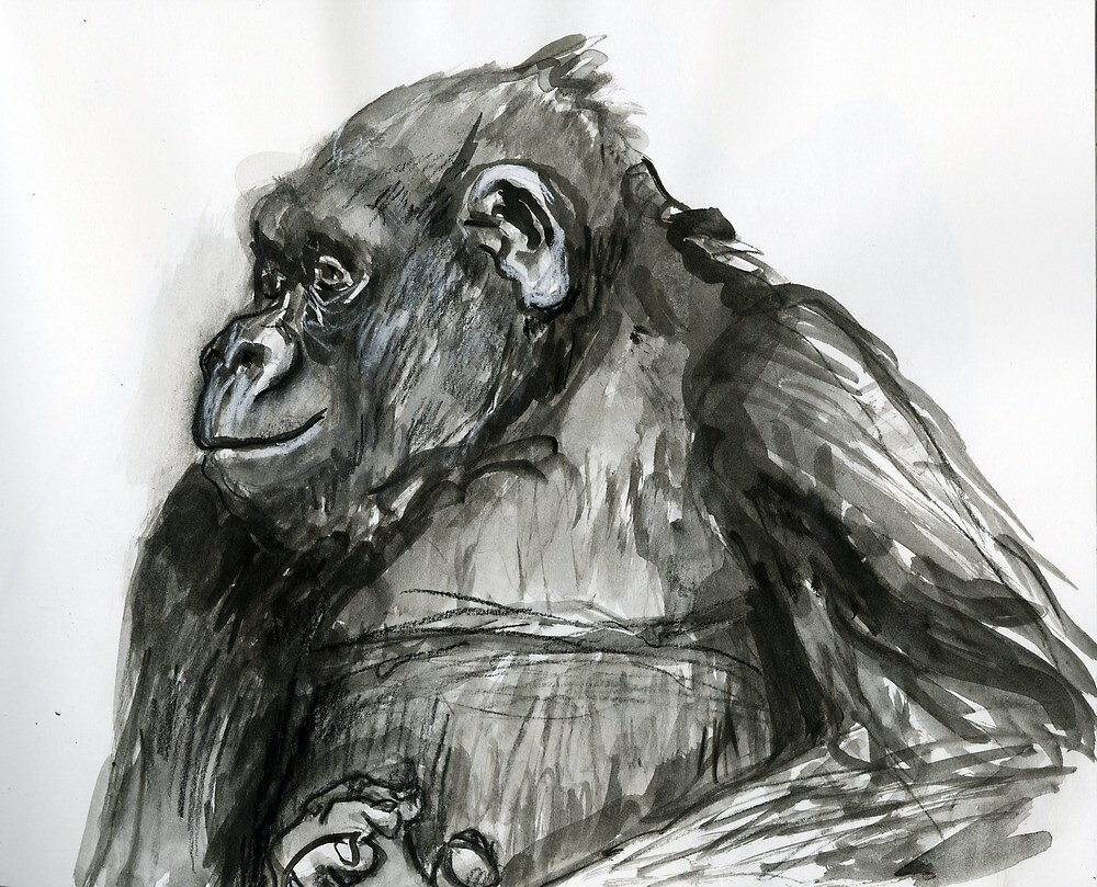 Primate Profile by WoolleyWorld