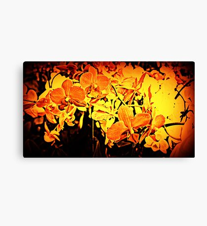 Firey Flowers Canvas Print