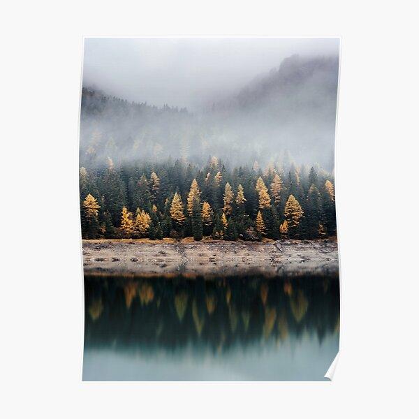 mystical fog forest Poster