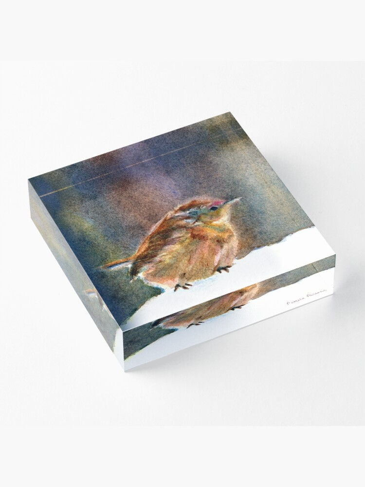 Alternate view of Mother Wren, from Watercolor Painting by Pamela Parsons Acrylic Block