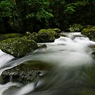 Lamington Flows by Robert Mullner