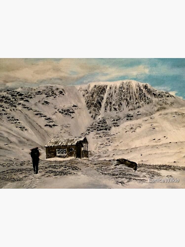 Scottish Highlands - Wall Art by EuniceWilkie