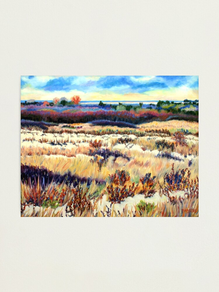 Alternate view of Winter Dunes, Long Beach Island, New Jersey, Jersey Shore, from impressionist oil painting by Pamela Parsons Photographic Print