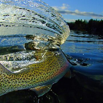 The Way Of The Trout by bpelkey1