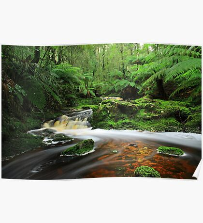 The Hebe River at Milabeena in nor west Tasmania , Australia Poster