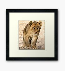 A Short Walk To Mom Framed Print