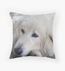 Winery Dog Maremma Throw Pillow