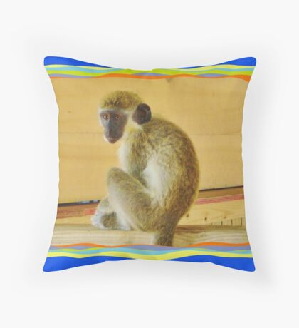Groovy Oliver Throw Pillow