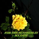 For the Sunshine in my Life! by Dave Sandersfeld