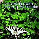 Flowers fly & so will you! by Dave Sandersfeld