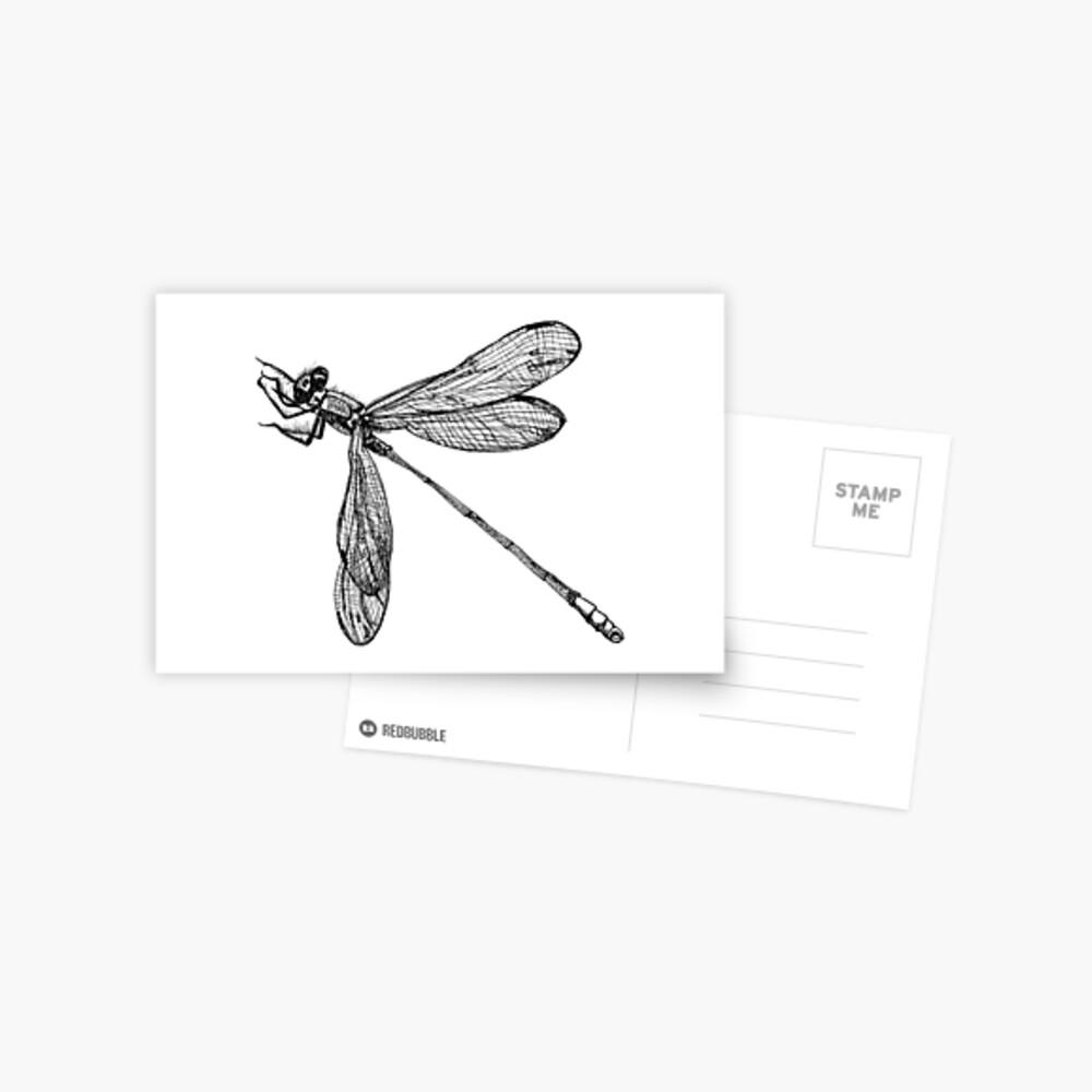 Lynette the Dragonfly  Postcard
