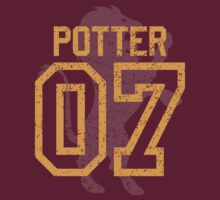 Potter Quidditch Jersey