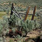 They Just Up And Left - Tuscarora, Elko County, NV by Rebel Kreklow