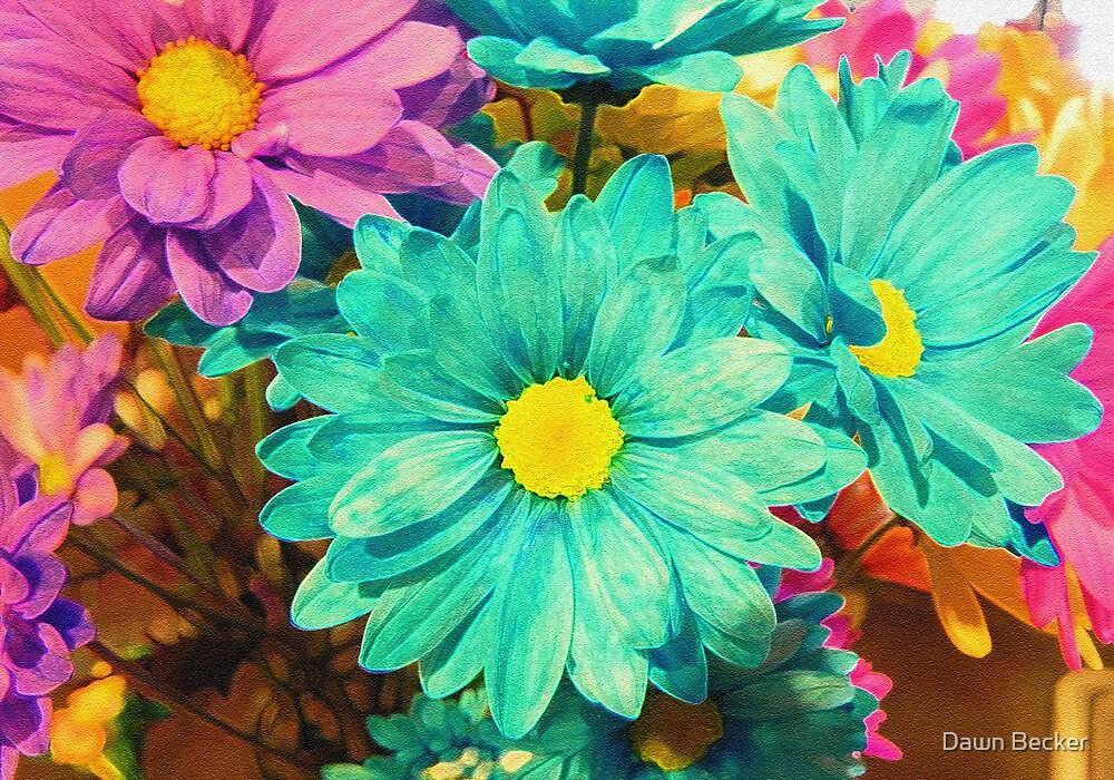 Rainbow of flowers © by Dawn Becker