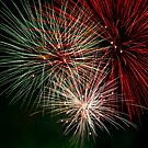 Fireworks in Monza - Italy by Luca Renoldi