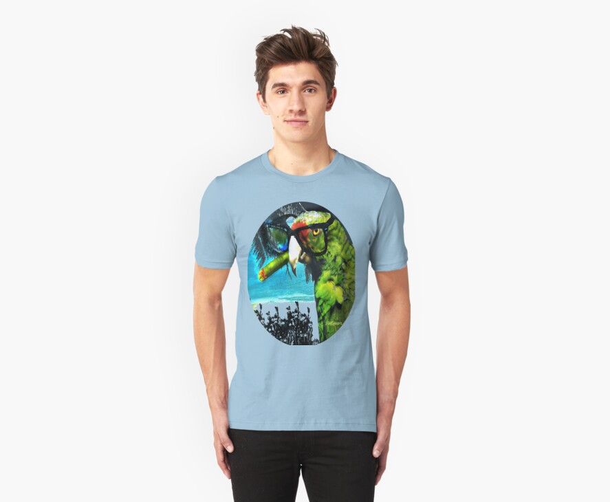 The Great Bird of Casablanca T by Seth  Weaver