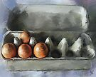 Protected...Eggs in Carton by © Helen Chierego
