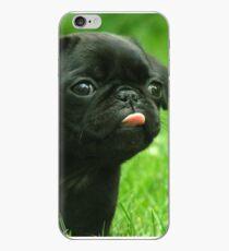 Black Pug iPhone Case