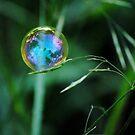 greenbubble by farmbrough