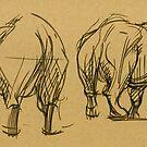 Rhino Sketches by Marcus  Gannuscio