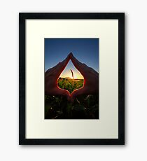 Handy Sunset Framed Print