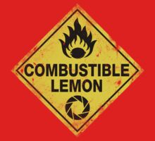 Combustible Lemon Warning Sign
