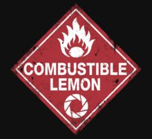 Combustible Lemon Warning Sign!