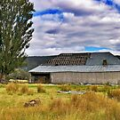 The Old Barn.... Tasmania by Ali Brown