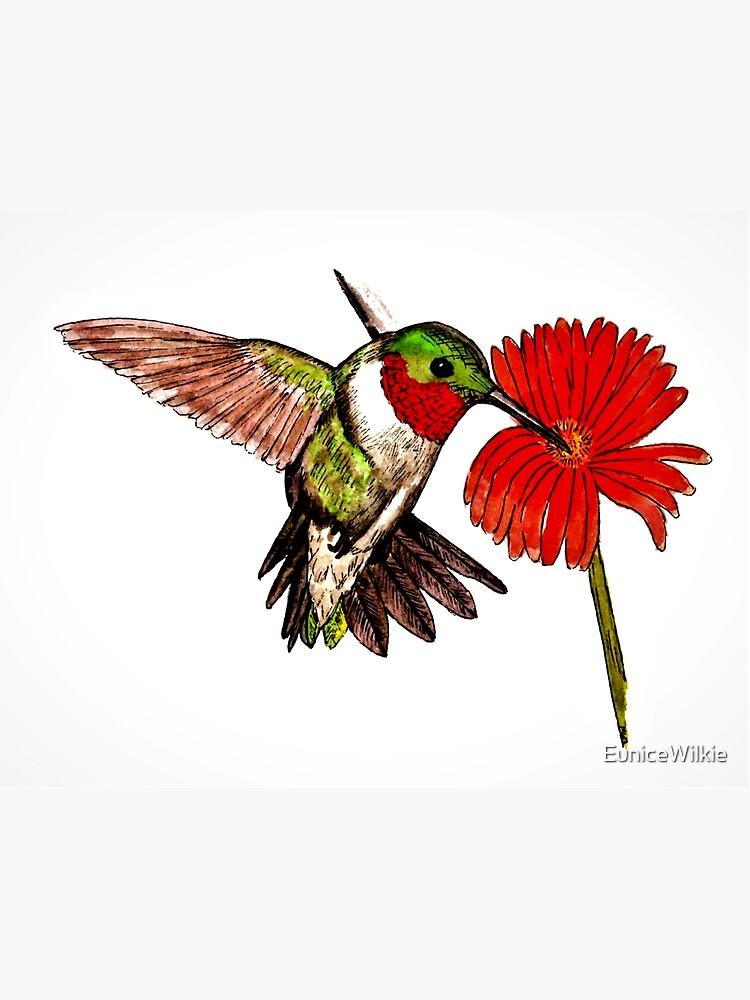 Humming Bird and Flower - Wall Art by EuniceWilkie