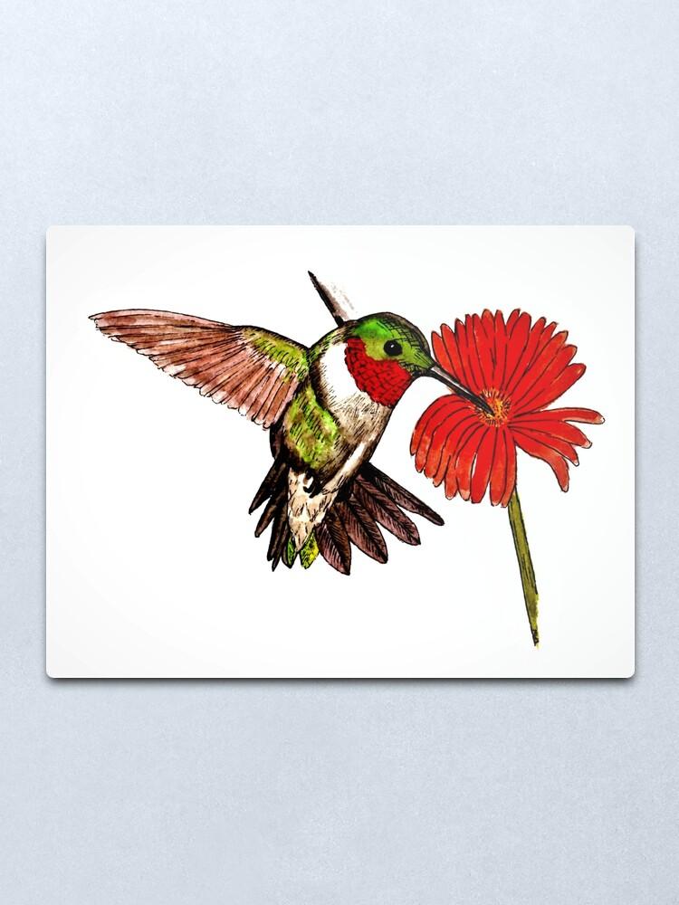 Alternate view of Humming Bird and Flower - Wall Art Metal Print