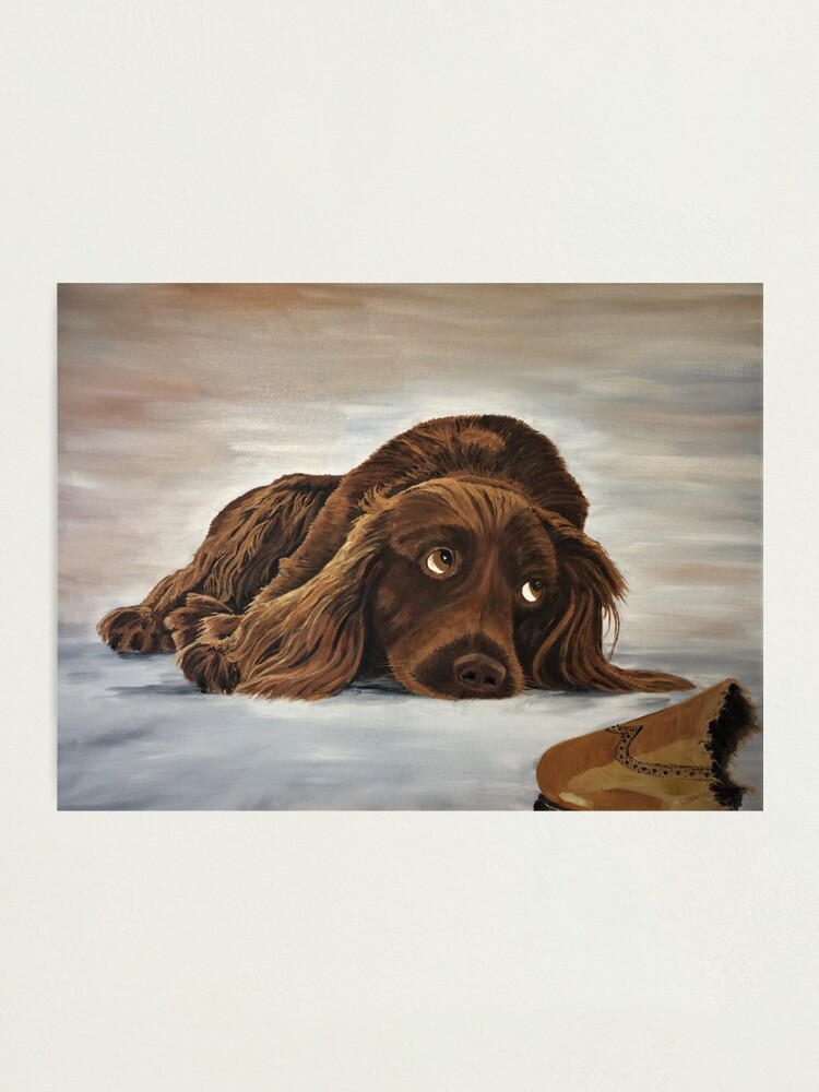 Alternate view of Naughty Spaniel - Wall Art Photographic Print