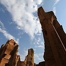 Terme di Caracalla by Samantha Higgs