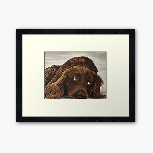 Spaniel Appeal - Wall Art Framed Art Print