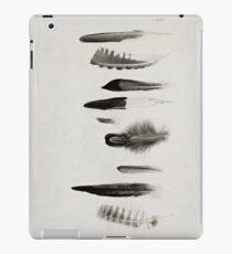 Feather Study no. 3 iPad Case/Skin