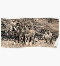 Horses Plowing - black and white Poster