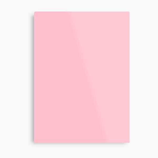 Pink, Pale Red Color Metal Print