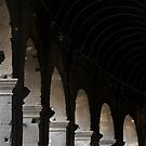 Colosseum Arches  by Samantha Higgs