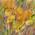 Golden Iris by bevmorgan