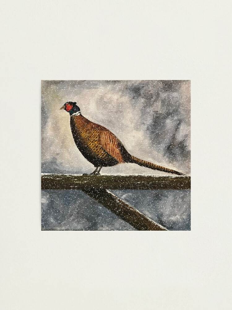 Alternate view of Pheasant in Falling Snow - Wall Art Photographic Print