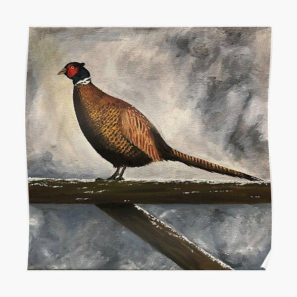 Pheasant in Winter Poster