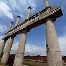 Pillars in Pompeii by Samantha Higgs