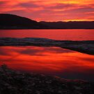red pool. eastcoast, tasmania by tim buckley | bodhiimages